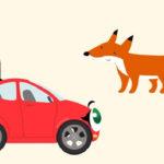 Бибика — Кролик, Лиса, Волк и Медведь