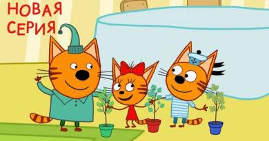 Три кота — Деревья (123 серия)
