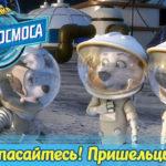 Белка и Стрелка — Тайны космоса — Спасайтесь! Пришельцы! (9 серия)